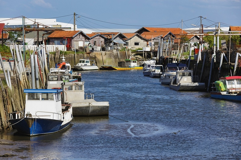 French fishing port of Gujan Mestras in Arcachon bassin , Girond